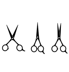 isolated cutting scissors vector image vector image