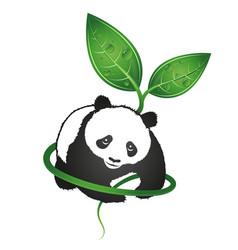 Panda eco symbol vector