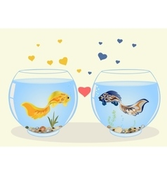 Two fish in love vector