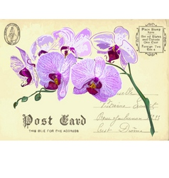 Vintage postcard with flower vector