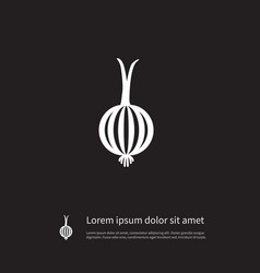 Isolated leek icon onion element can vector