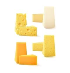Set of kind cheese cheddar bri camembert vector