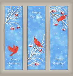 Vertical christmas banners bird rowan branches vector