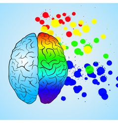 Colored left brain and right brain vector