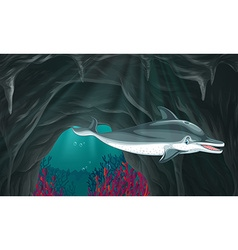 Dolphin swimming under the ocean vector