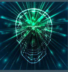 A human skull with green rays the science vector