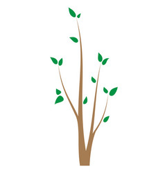 Branch of tree with young leaves seedling vector