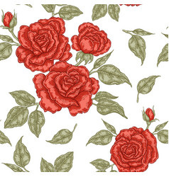 red rose flowers buds and leaves seamless vector image
