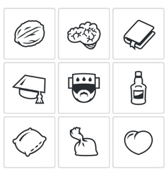Set of brain development icons walnut vector