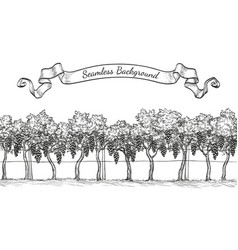 Vineyard seamless background vector