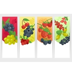 Berries color banners set vector