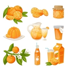 Orange products set vector image vector image