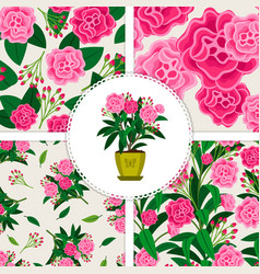 pink flower icon and patterns set vector image vector image