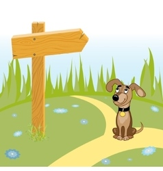 Dog and wooden arrow on the road vector