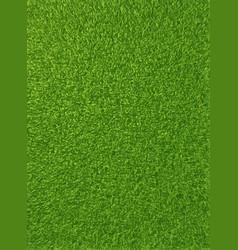 Background texture of fresh green grass vector