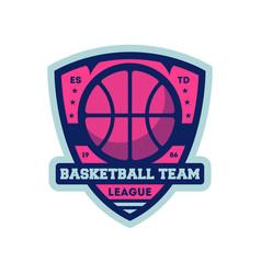 Basketball professional team vintage label vector