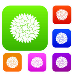 flower set color collection vector image vector image