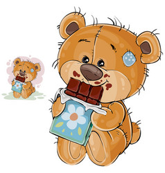 a brown teddy bear sweet vector image vector image