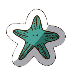 color starfish icon stock vector image