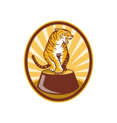 Angry tiger sitting on top of plinth vector