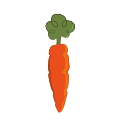Carrot icon organic and healthy food vector