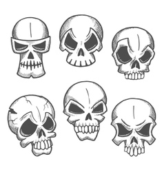 Artistic skeleton skulls sketches icons vector