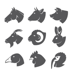 Farm animals vector image vector image