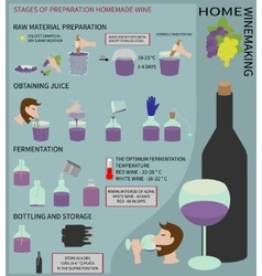 Home winemaking Wine from grapes Infographics vector image