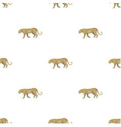 Leopardafrican safari single icon in cartoon vector