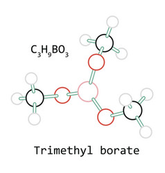 molecule c3h9bo3 trimethyl borate vector image