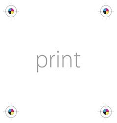 print icon cmyk vector image
