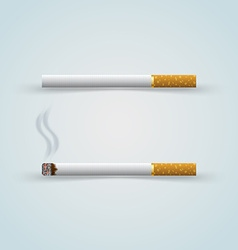 Two cigarettes vector