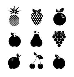 Contour natural fruit background icon vector