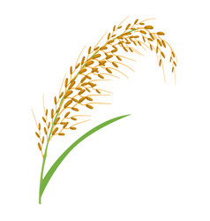 Oat stalk icon cartoon style vector