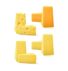 Set of pieces cheddar swiss cheese vector