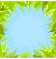 sky and green leaves vector image