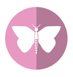Women day butterfly icon shadow vector