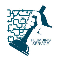 Cleaning of plumbing vector