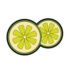 Lemon in halves vector