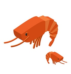 Shrimp isometric on white background marine vector