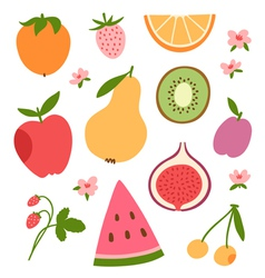 Stylized flat fruits berries and pink flowers vector