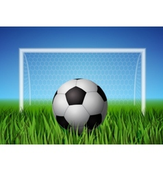 Soccer ball and grass field vector