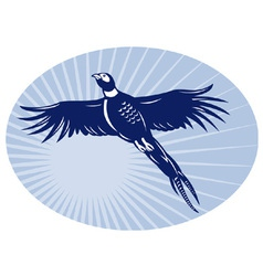 pheasant bird flying retro vector image