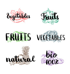 Doodle handdrawn colored piles of fruits vector