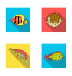 Shrimp fish hedgehog and other speciessea vector