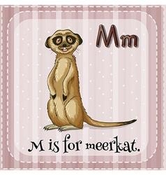Meerkat vector image