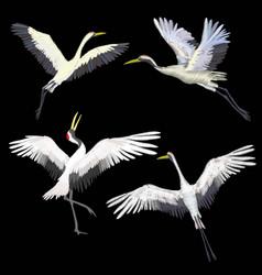 Crane embroidery vector