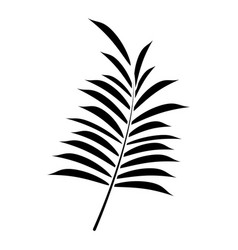Leave palm tropical flora pictogram vector