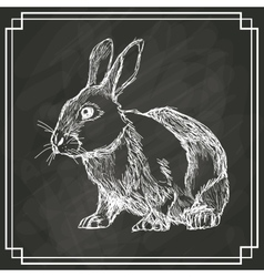 white bunny sketch dark background vector image
