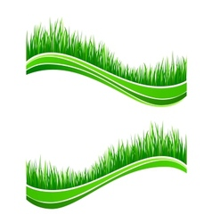 Waves of fresh spring green grass vector